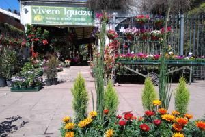 Hogar Jardín Muebles Sin datos  VIVERO IGUAZU